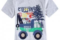 Boys-gray-casual-short-sleeve-printed-t-shirt